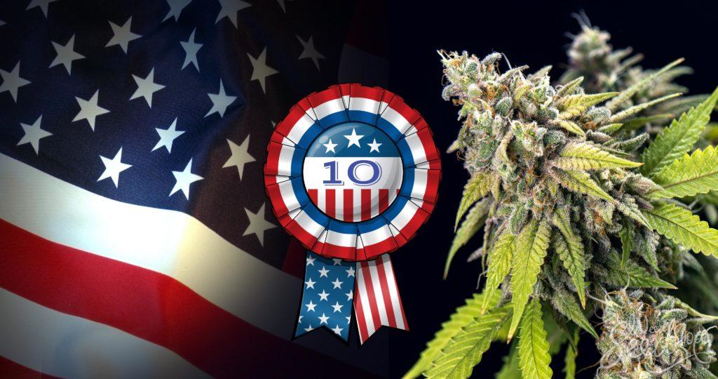 10 Cannabissorten, die in den USA ein Hit sind - WeedSeedShop Blog