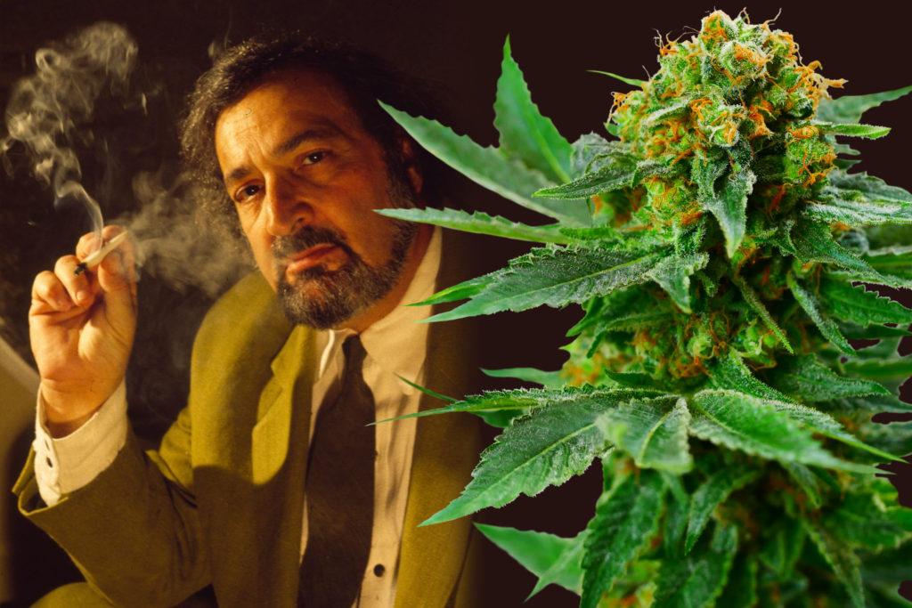 Diese 13 Cannabis-Sorten Sind Nach Stars Benannt