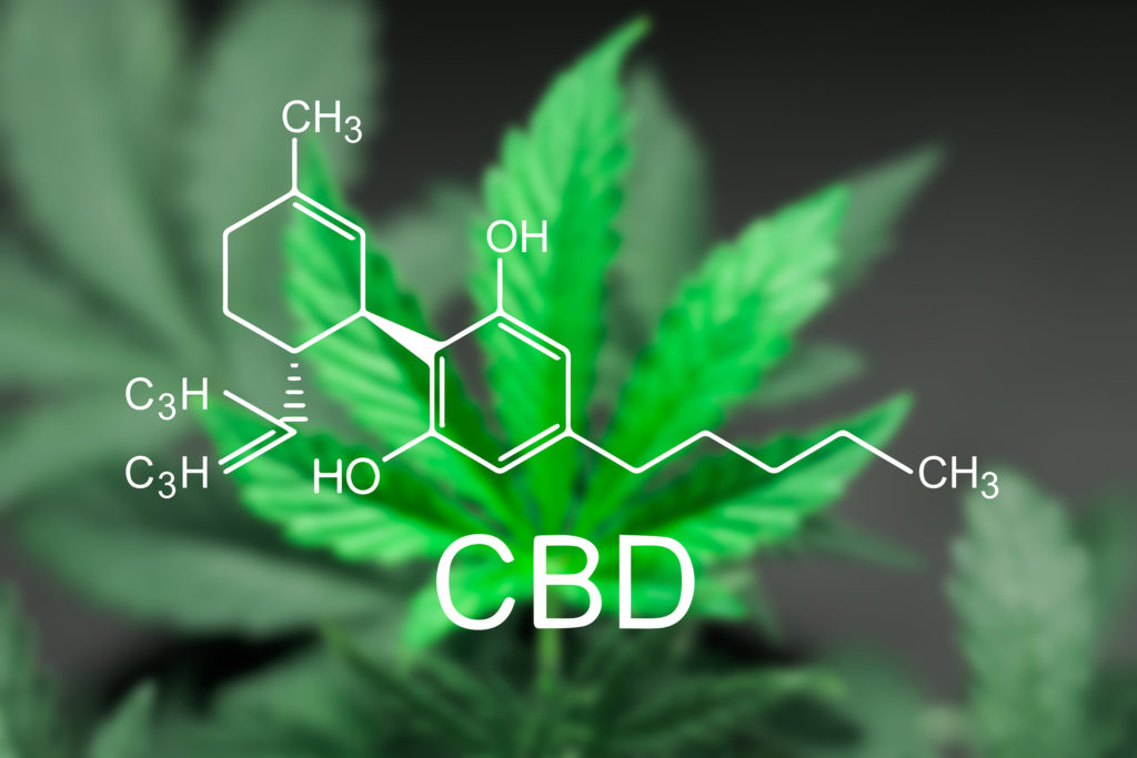 7 Ways to Make Your Own CBD Cream at Home