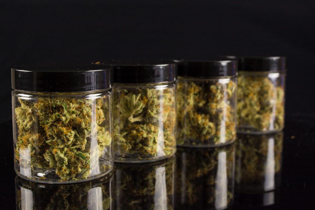 7 formas de subir el THC en tu marihuana - WeedSeedShop