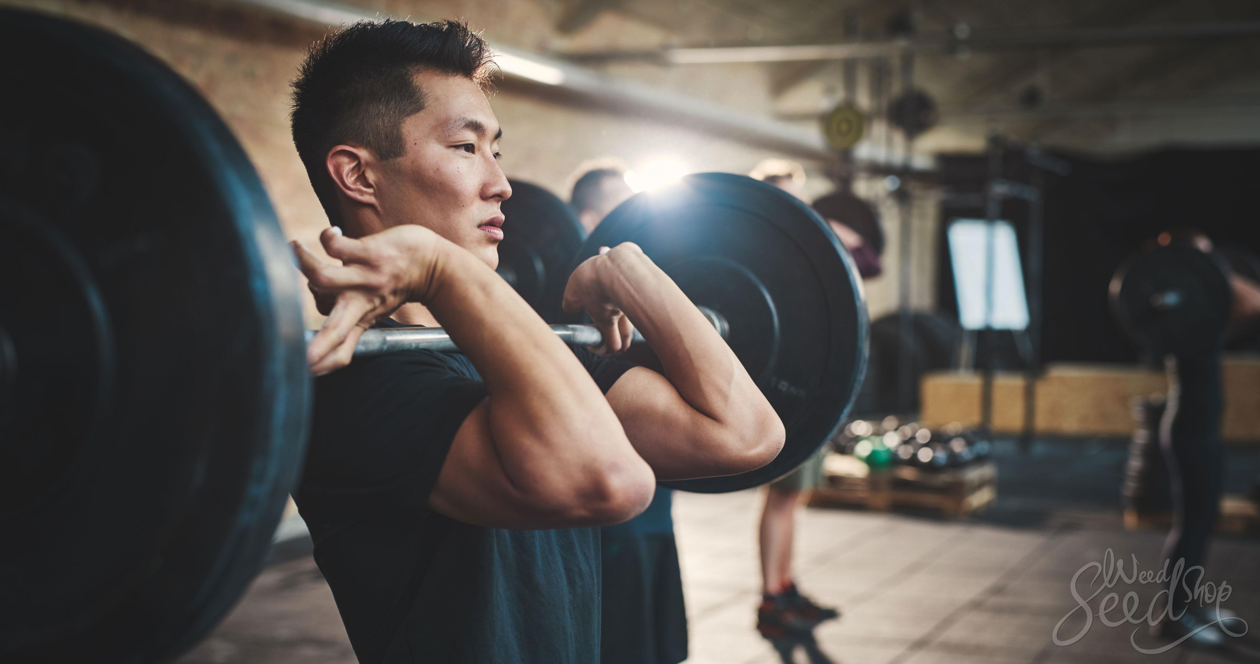 Las mejores 8 cepas para hacer ejercicio - WeedSeedShop