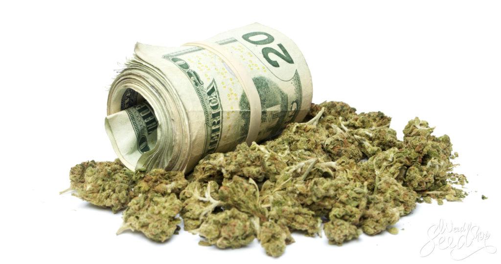 9 Wege um bei Gras Geld zu sparen- WeedSeedShop
