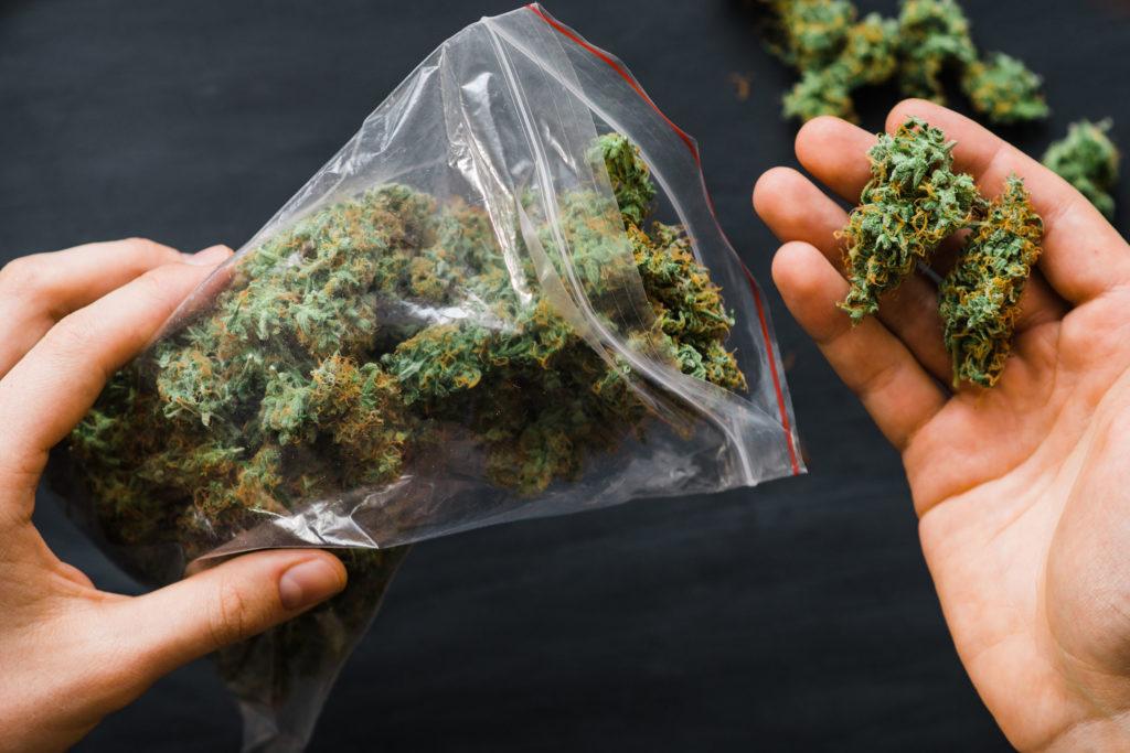 9 formas para ahorrar dinero en marihuana- WeedSeedShop