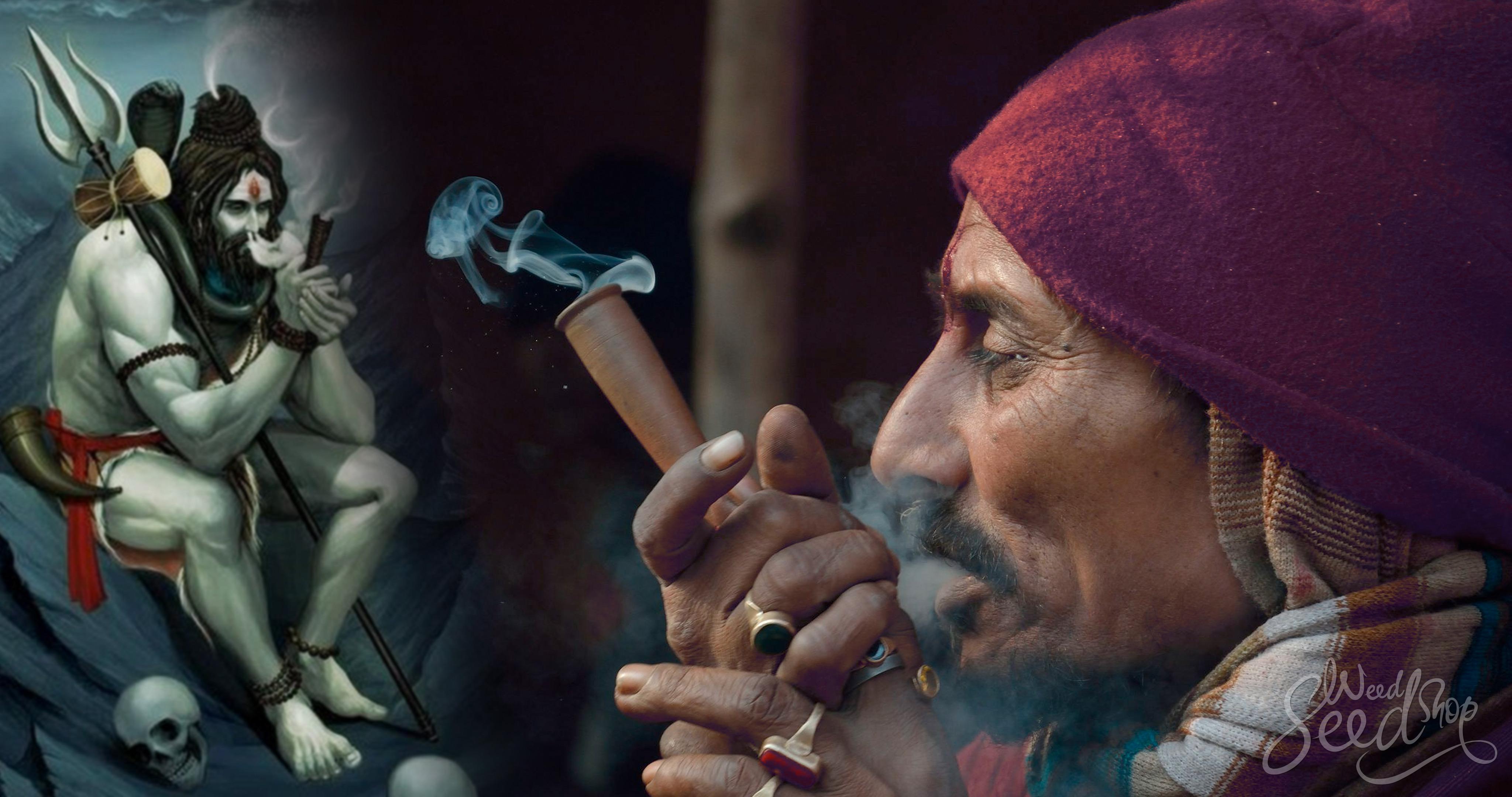 Fumer avec Shiva : l'Inde et le cannabis - Weed Seed Shop Blog
