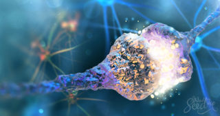 Anandamide: The Human Body's Own THC
