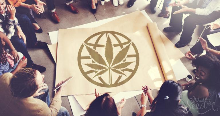Wie die Community von Marihuana profitiert