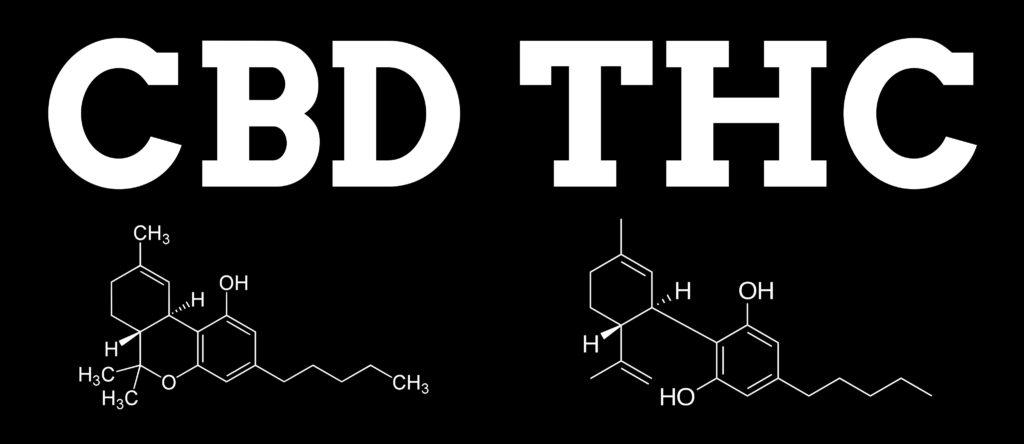 Las diferencias entre el THC y el CBD - Weed Seed Shop Blog