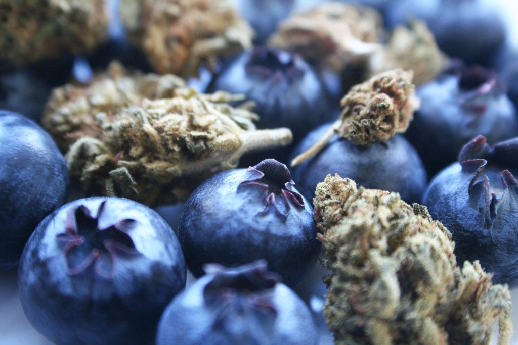 Was sind Flavonoide und was tun sie? - WeedSeedShop