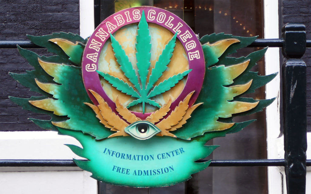 Where can you go to cannabis college? - WeedSeedShop Blog