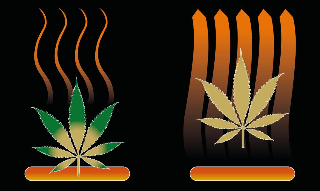 Vaporizadores parte 2: ¿Cómo funciona un vaporizador? - Weed Seed Shop Blog