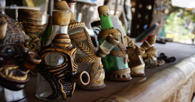 Different Types of Bongs: Which Is Best for You?