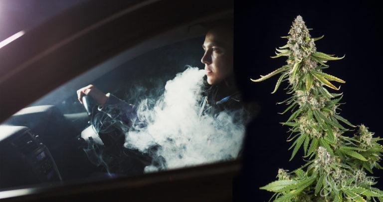 Macht Marihuana aus dir einen schlechten Autofahrer?