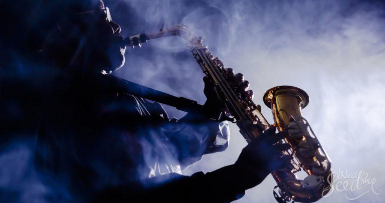 Waarom wiet muziek zoveel beter laat klinken
