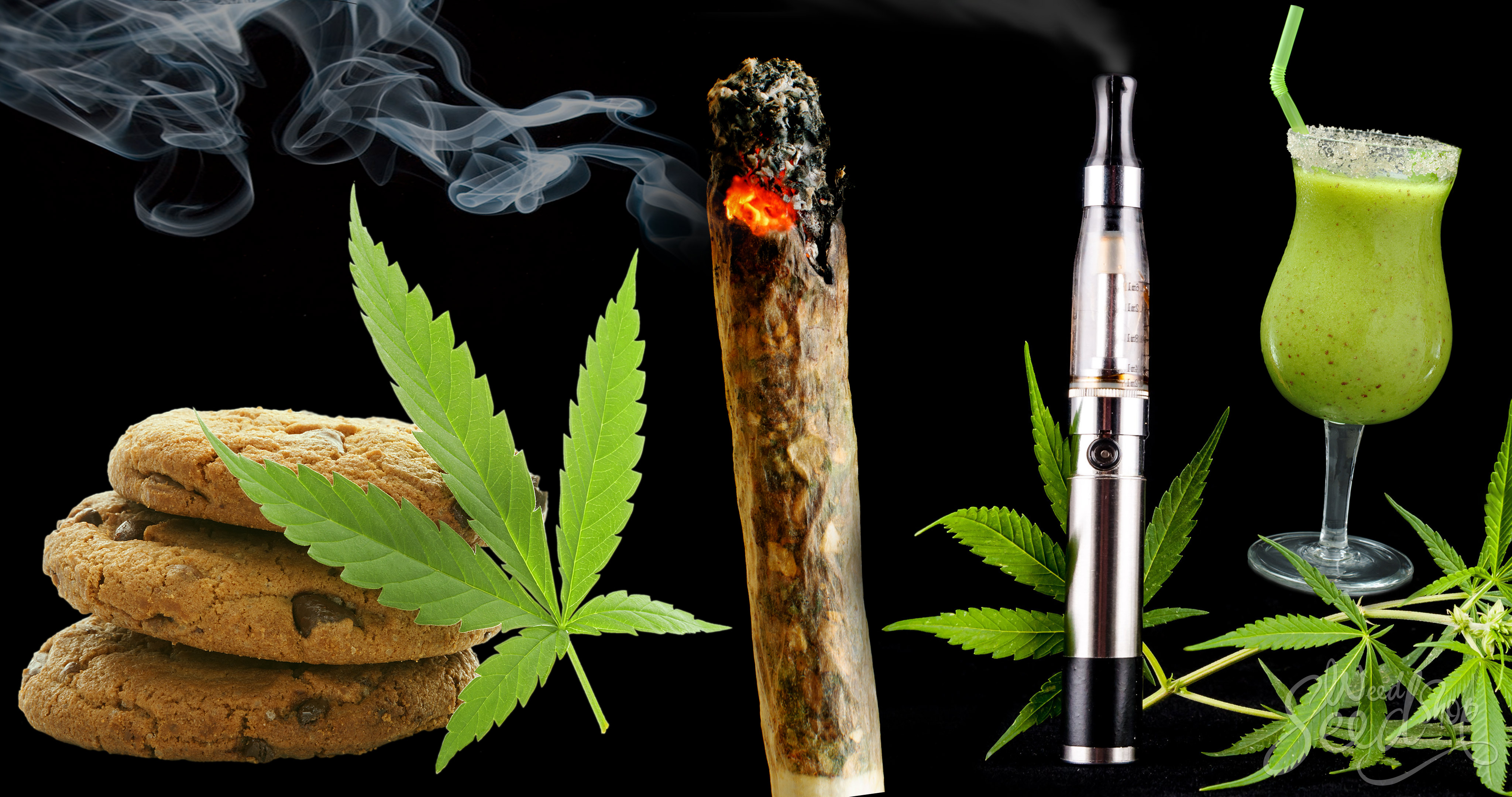 marijuana smoking and reader Recreational marijuana in general research certificate taxes water rights click the get adobe reader image to get a free download of the reader from adobe.