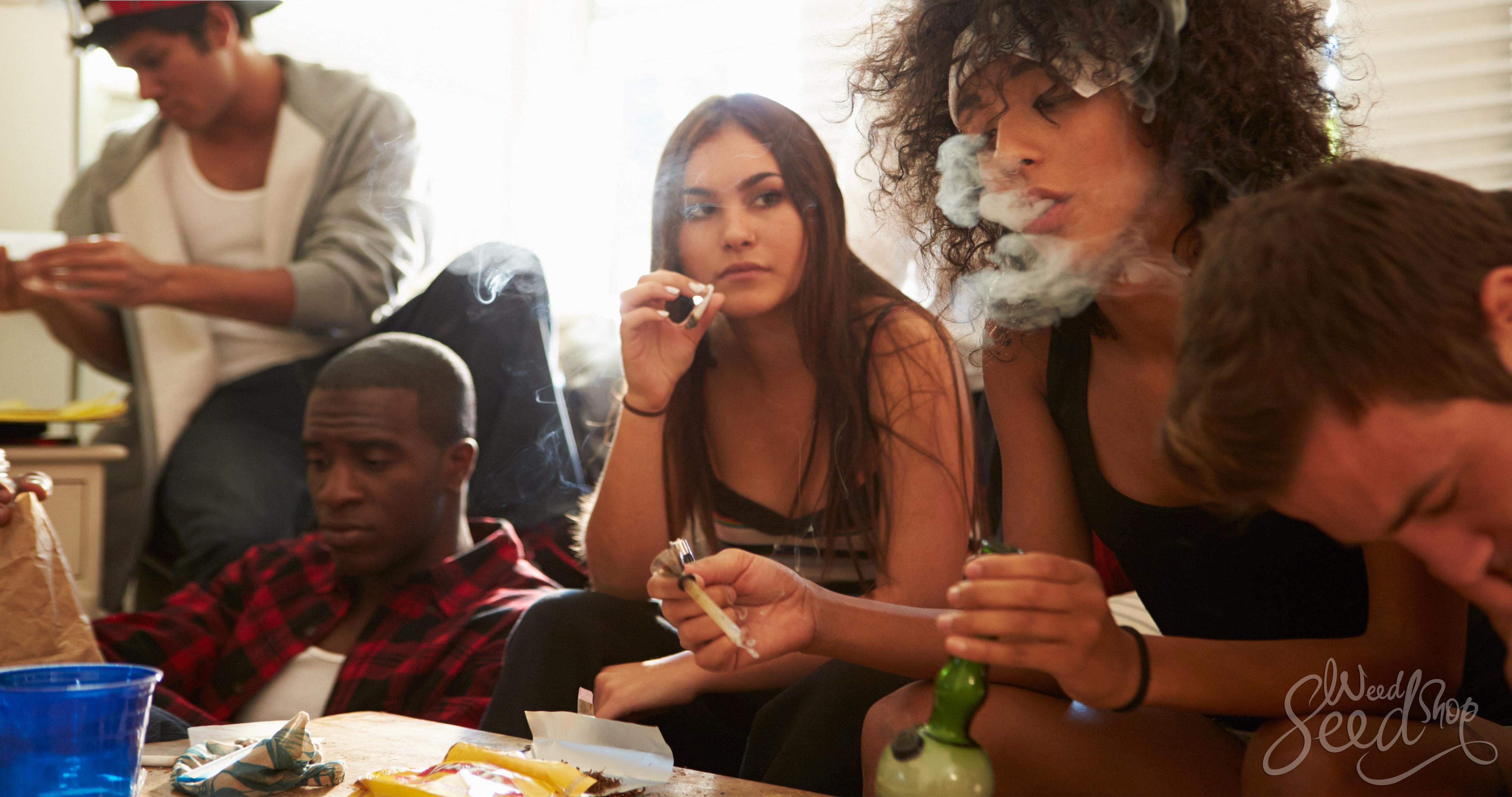 8 souches énergisantes à fumer en journée - WeedSeedShop