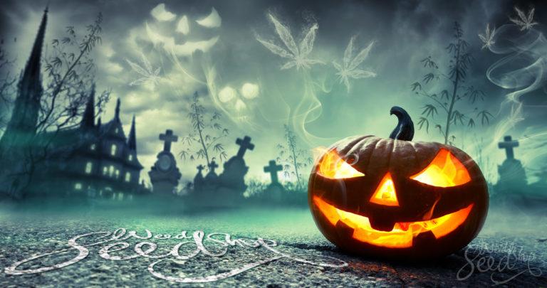 Onze 10 Favoriete Wietgerelateerde Halloween Outfits