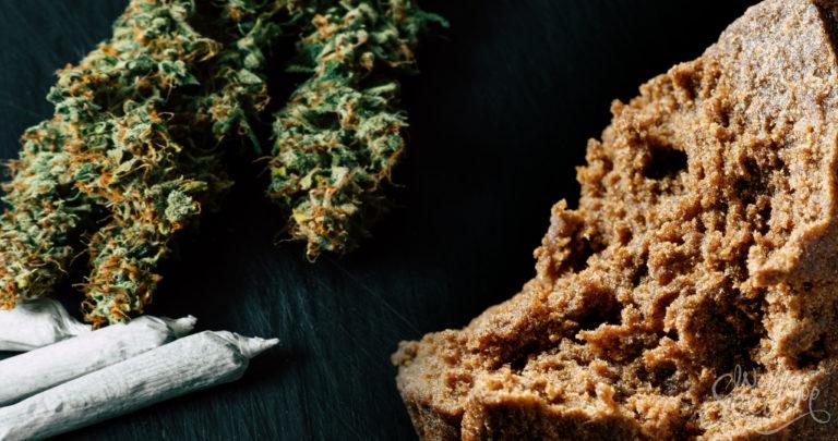 Quelles sont les différences entre le haschich et la weed ?