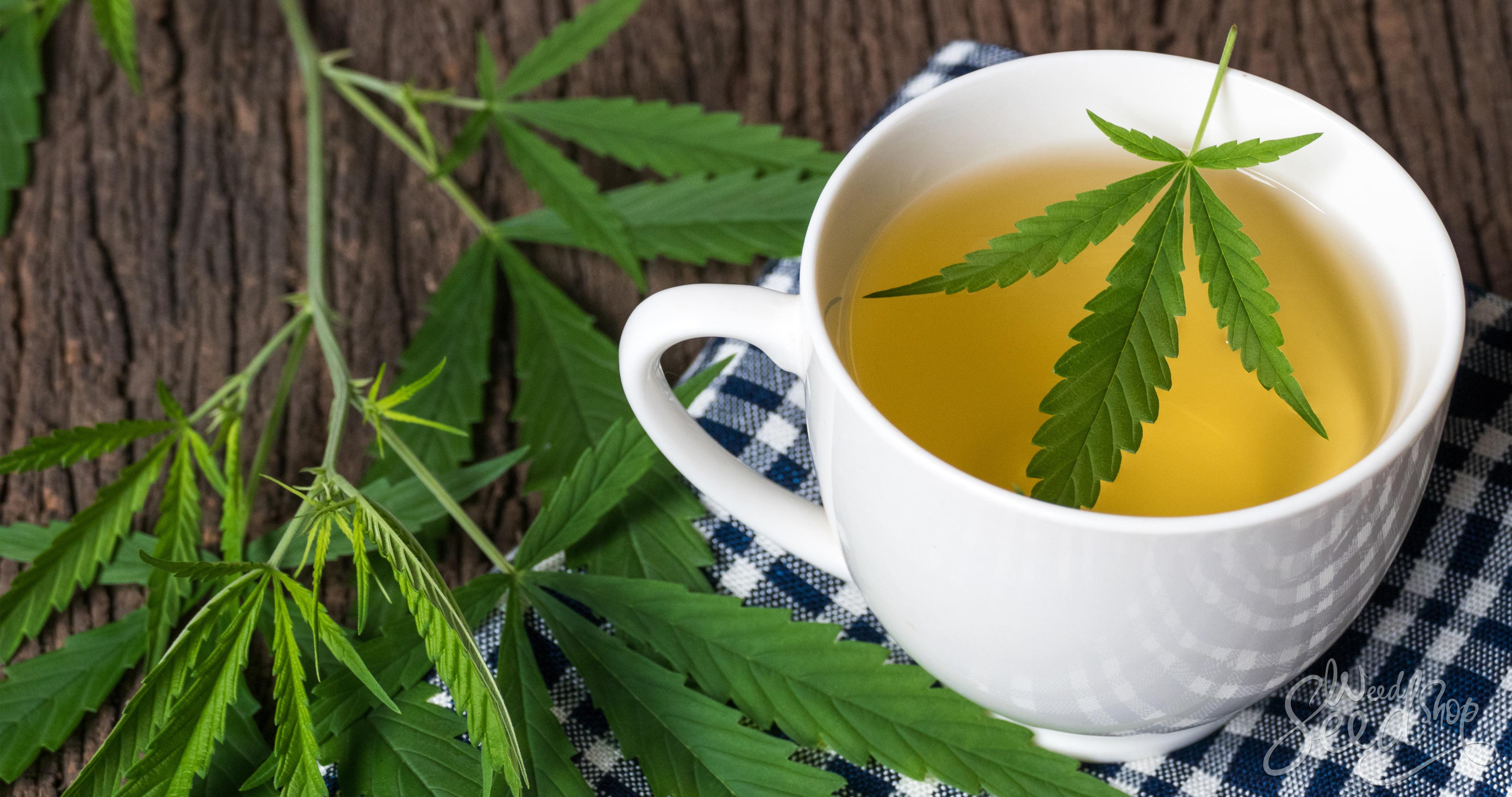 Wie du Cannabistee aus übrig gebliebenen Stämmen zubereitest - WeedSeedShop Blog