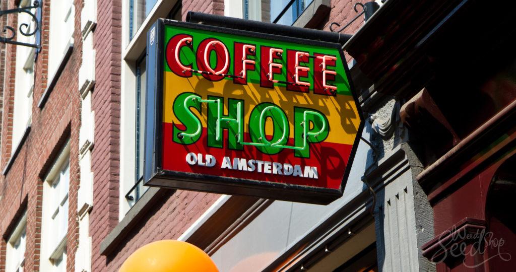 How to Visit a Coffeeshop in Amsterdam - WeedSeedShop