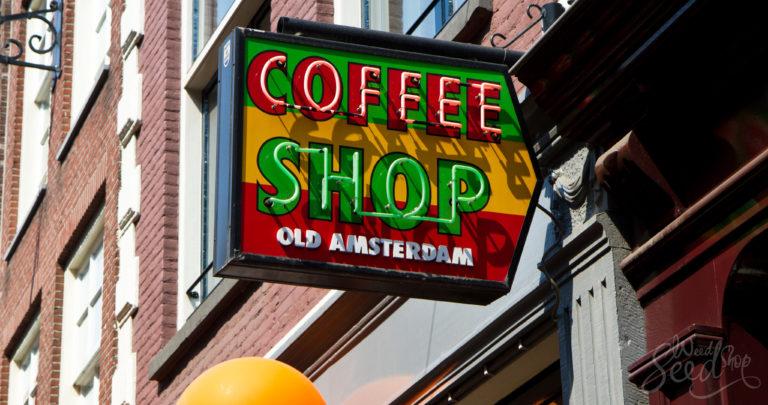 Dein Guide für einen Coffeeshop Besuch in Amsterdam