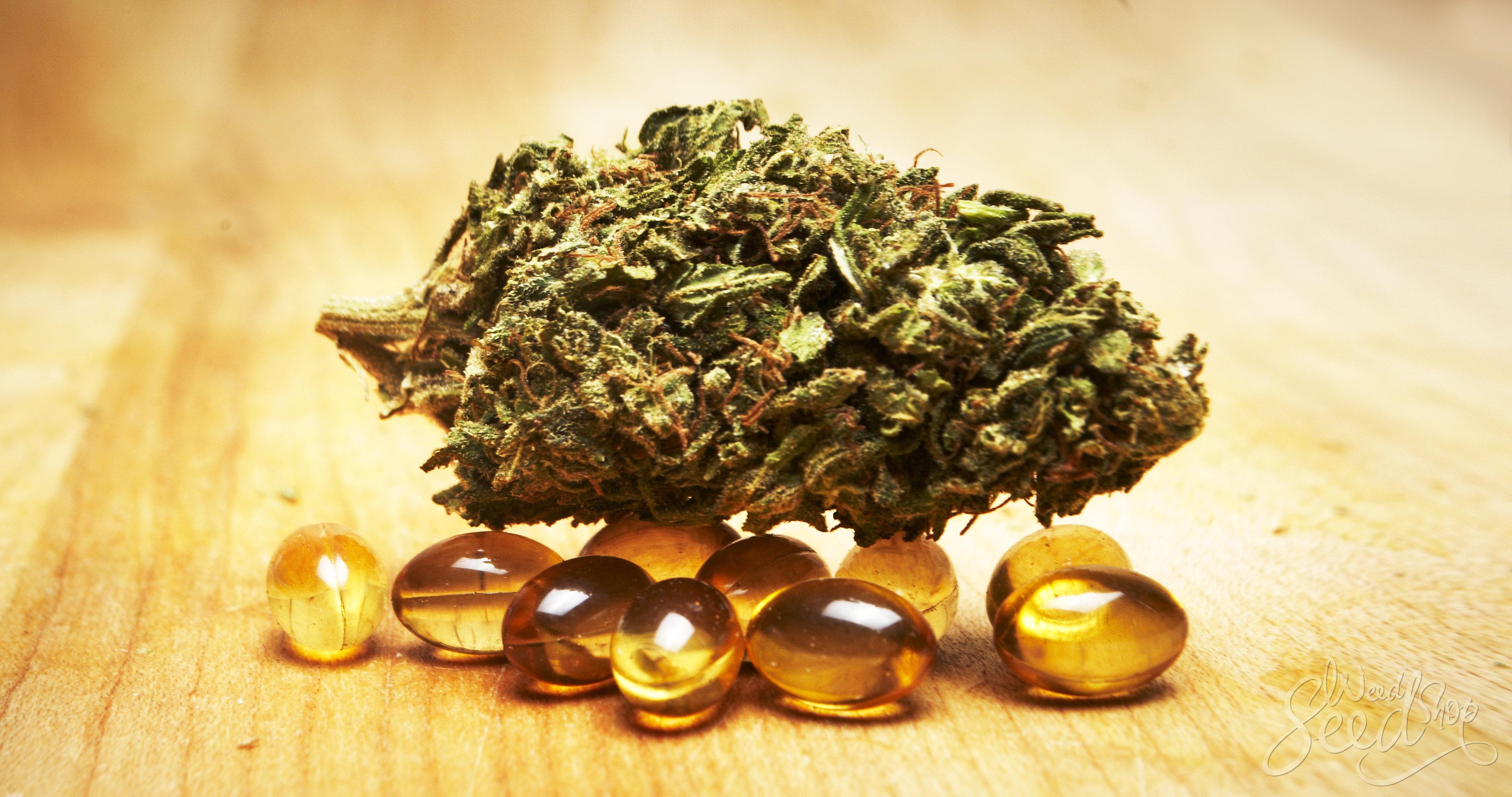 Wie man Cannabis-Kapseln herstellt