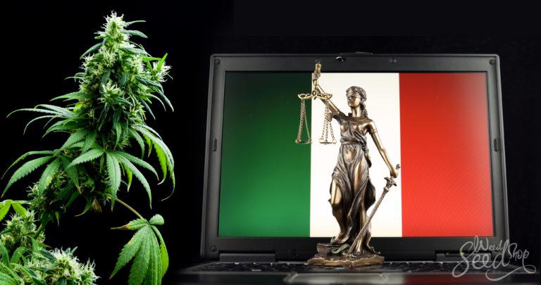 Le cannabis est-il légal en Italie ?