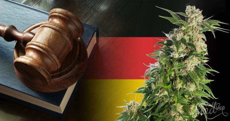 Is wiet legaal in Duitsland? Het laatste nieuws
