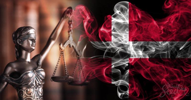 ¿El cannabis es legal en Dinamarca? Todo sobre las últimas noticias