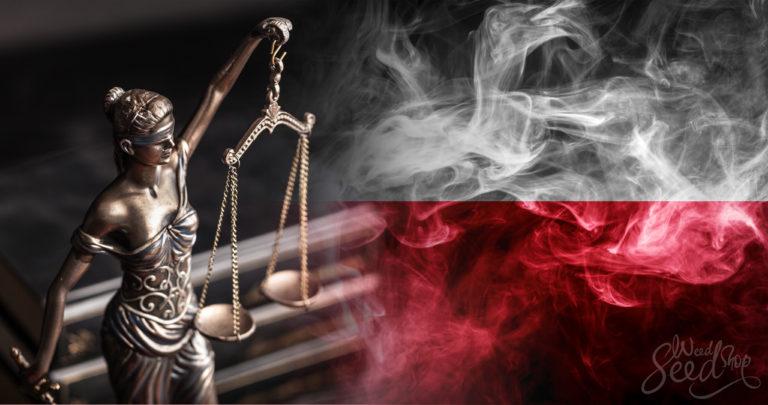 ¿El cannabis es legal en Polonia? Todo sobre las últimas noticias