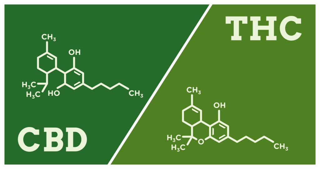 Marihuana als Therapie für Morbus Crohn? - WeedSeedShop