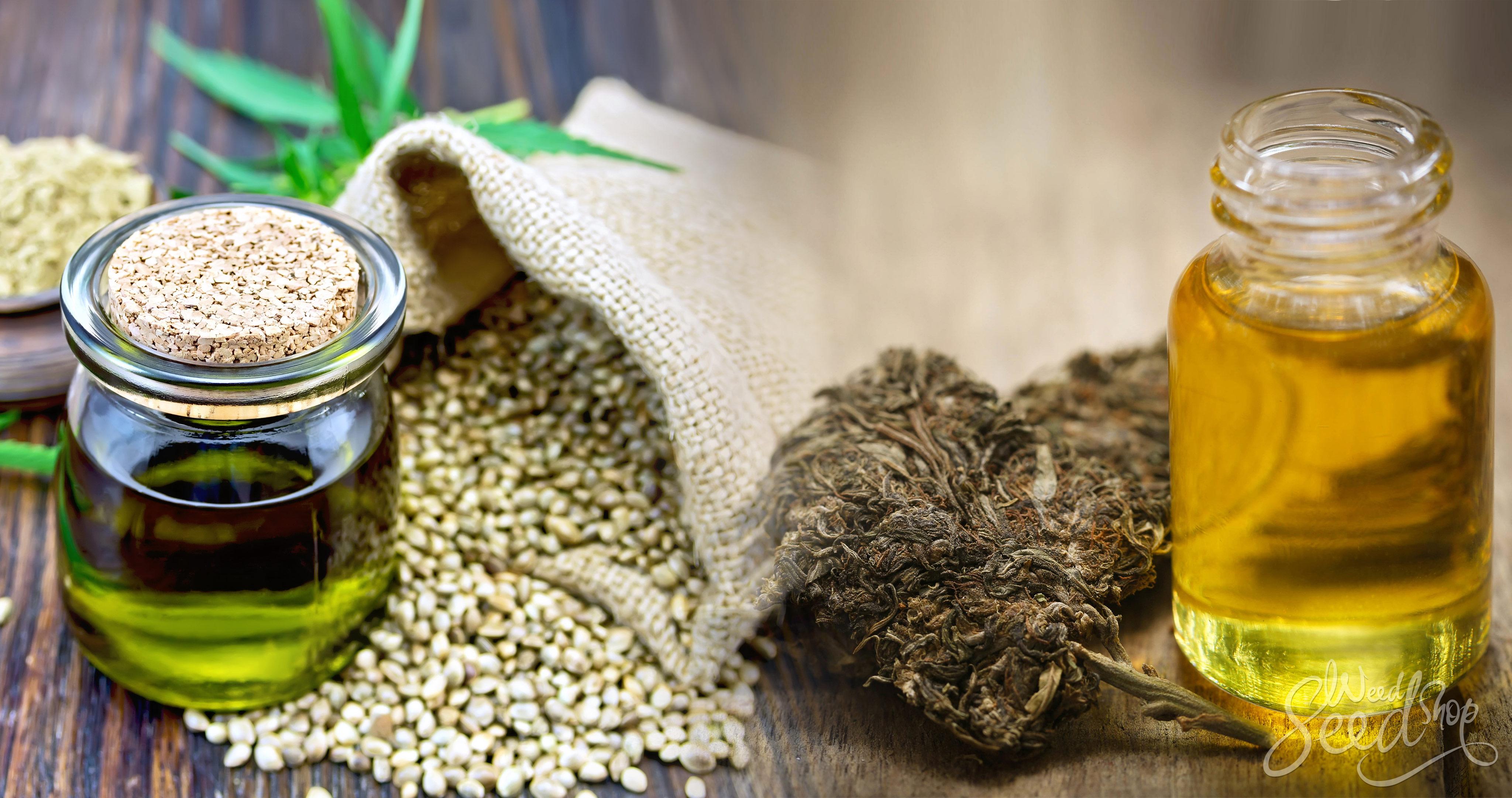 Conoce la diferencia: Aceite de cáñamo vs. Aceite de Cannabis - WeedSeedShop