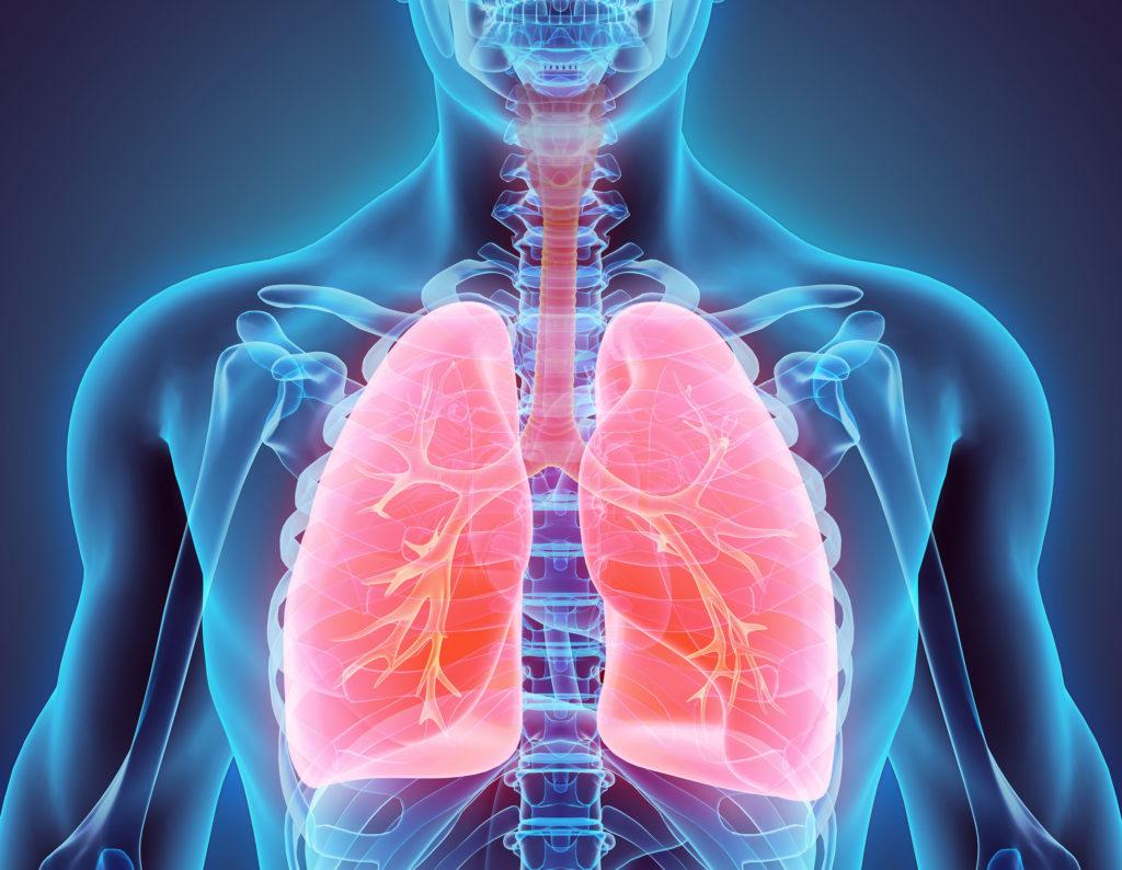 Long-Term & Short-Term Effects of THC – WeedSeedShop