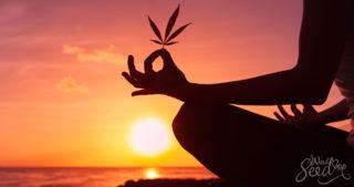 Les façons de combiner cannabis et méditation
