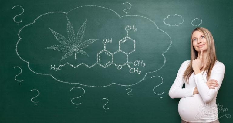 Le cannabis pendant la grossesse – oui ou non ?