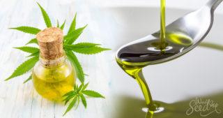 Les propriétés incroyables de l'huile de chanvre