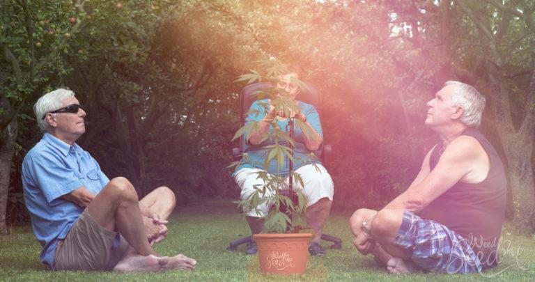 Ancianos usando cannabis: Diez buenas razones para explorar esta tendencia en crecimiento