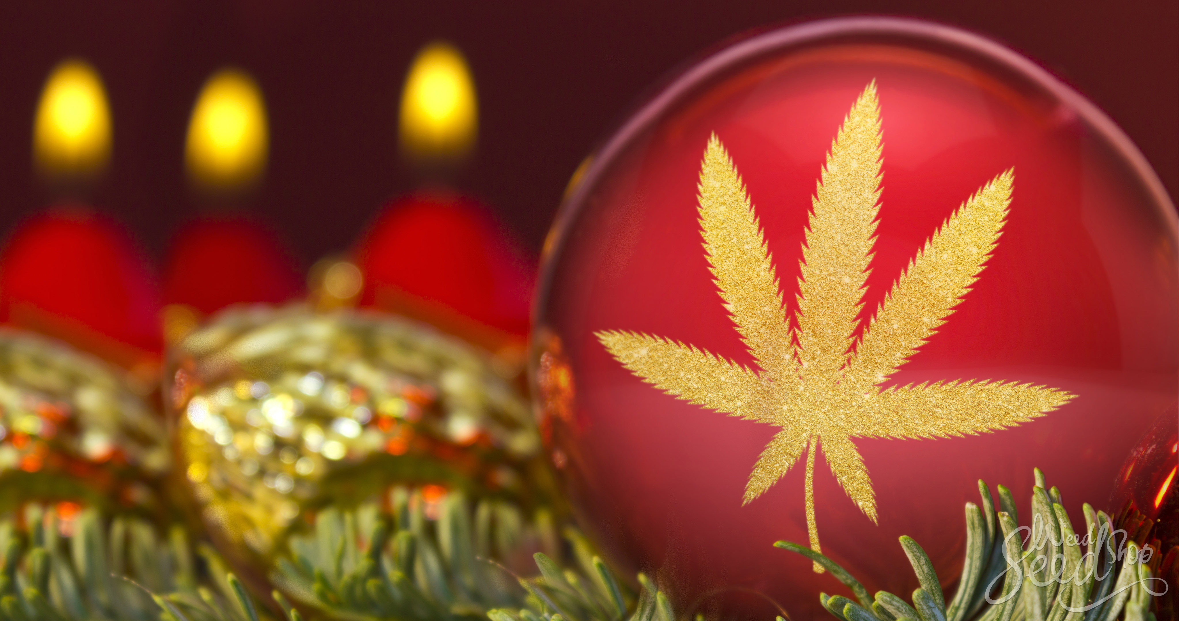 Survive Your Holiday Season with Mary-Jane – WeedSeedShop