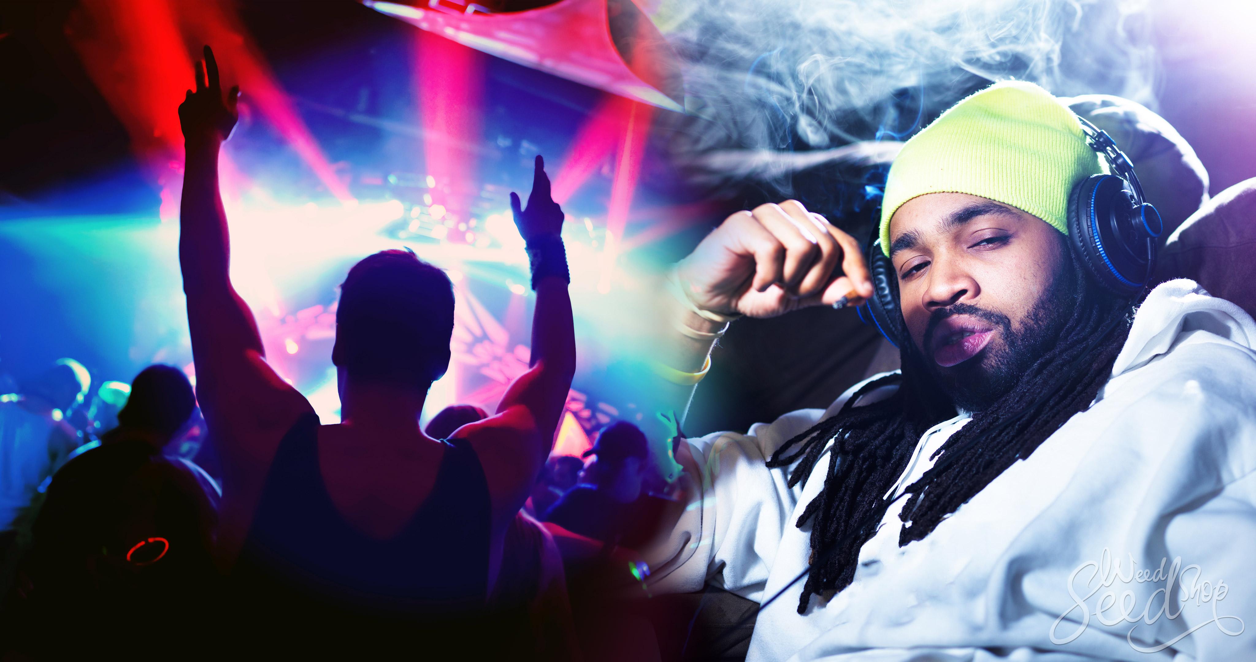 Wat is het Verschil Tussen High en Stoned? - WeedSeedShop