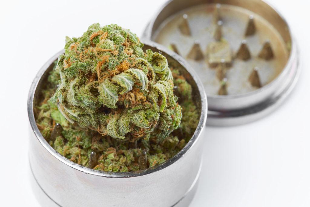 Los pros y contras de moler marihuana - WeedSeedShop