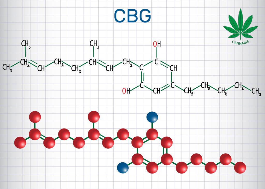 Cannabinoid Science: CBG, oder Cannabigerol - WeedSeedShop