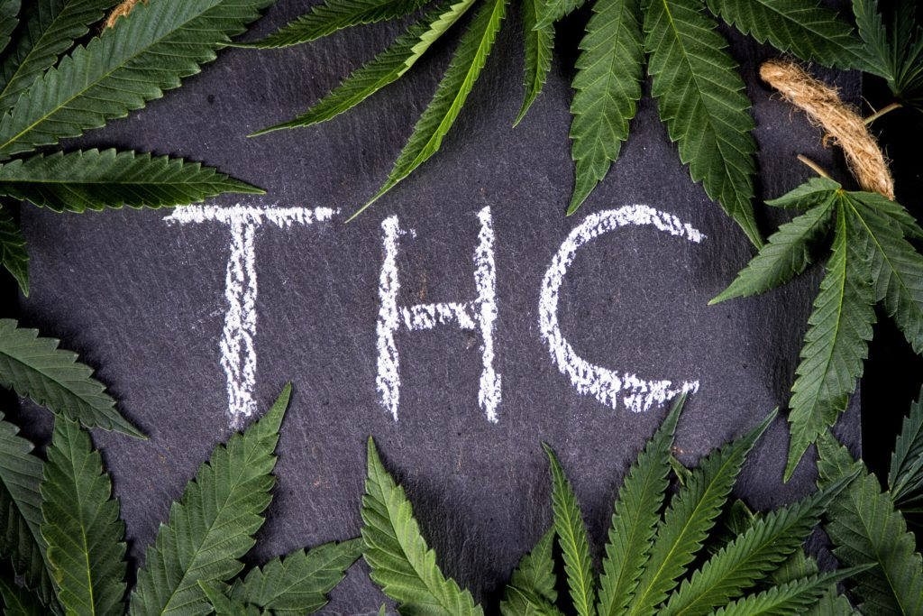 Das Endocannabinoid-System für Anfänger