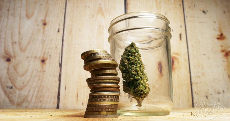 Het economische aspect van marihuana