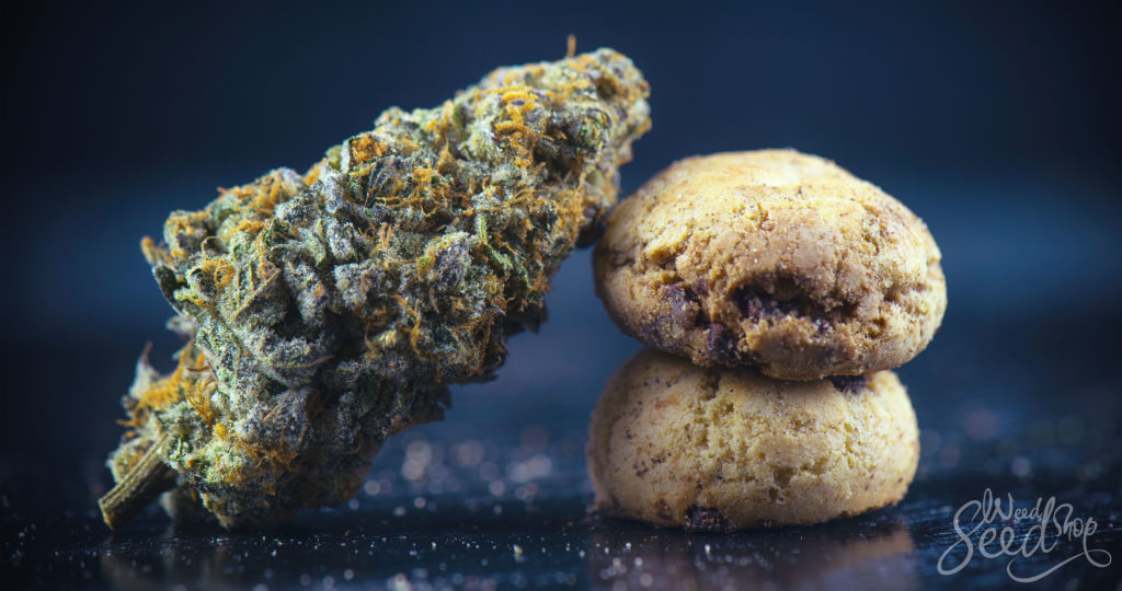 Top 15 Cannabis Edibles On The Market! - WeedSeedShop