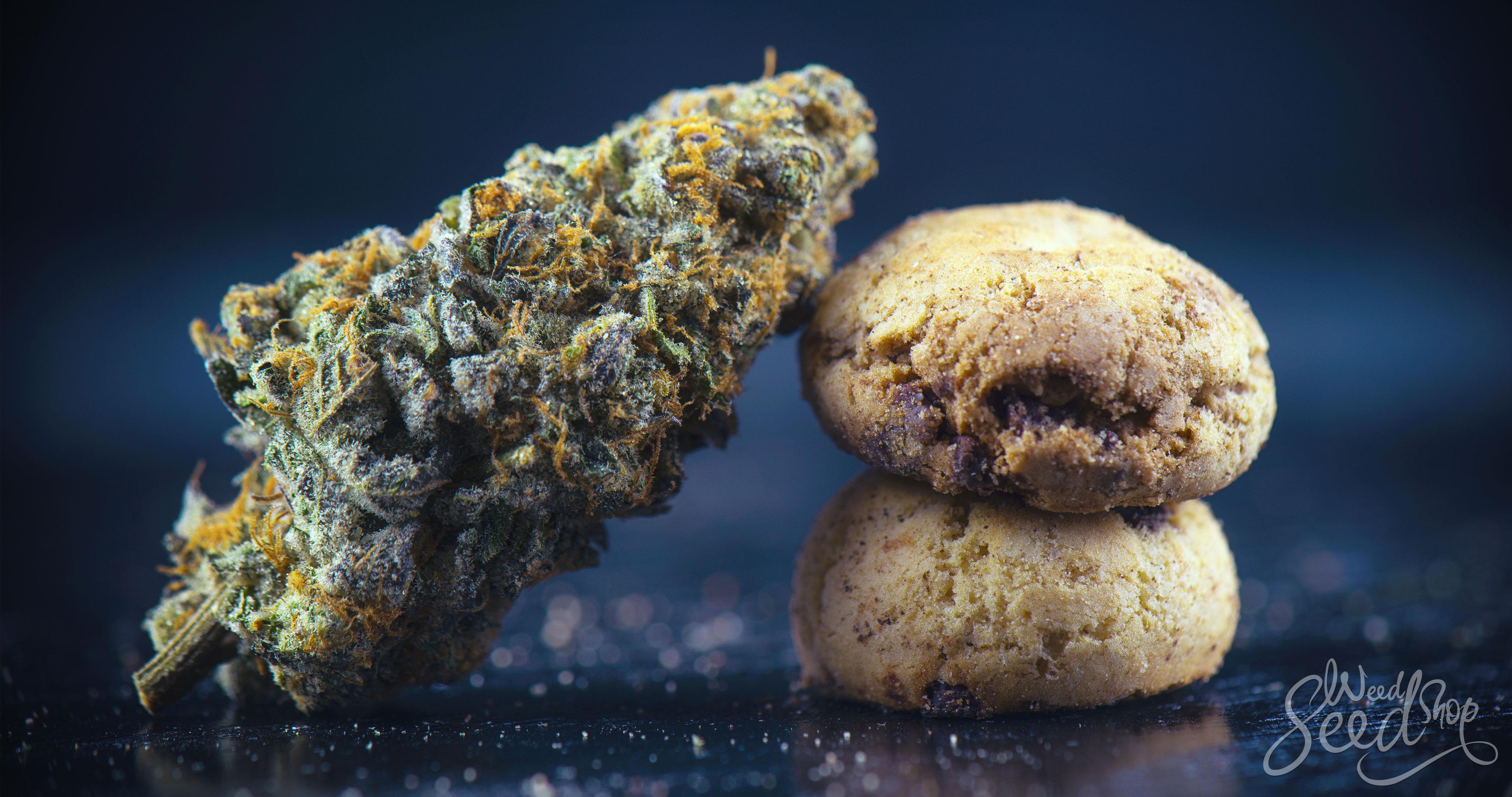 Top 15 Cannabis Edibles Zum Kaufen! - WeedSeedShop