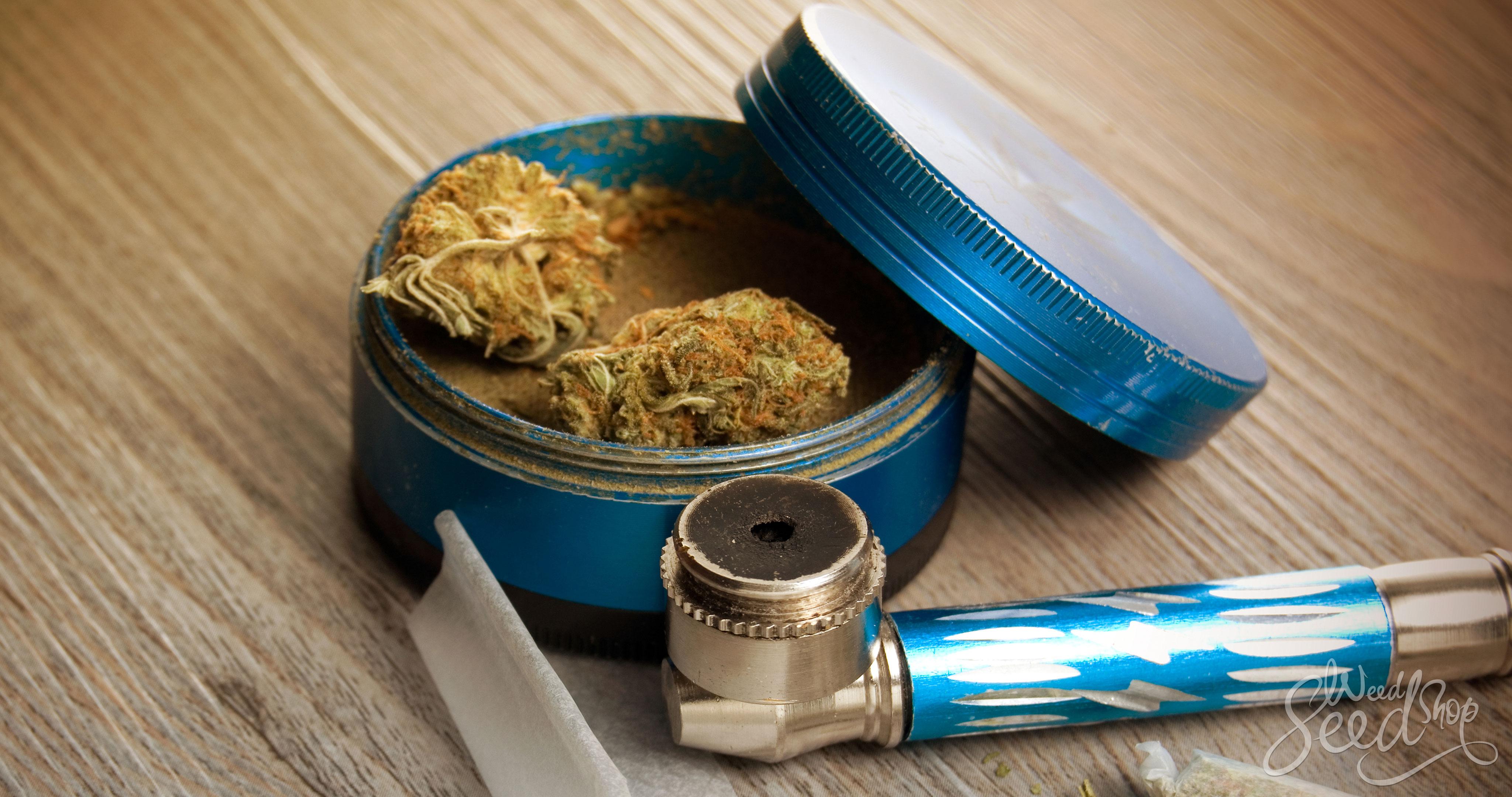 El mejor kit de supervivencia para fumones – WeedSeedShop