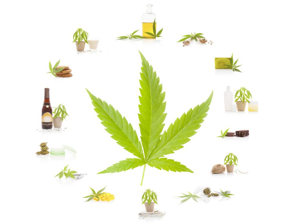 Una gran variedad de formas para amar la marihuana