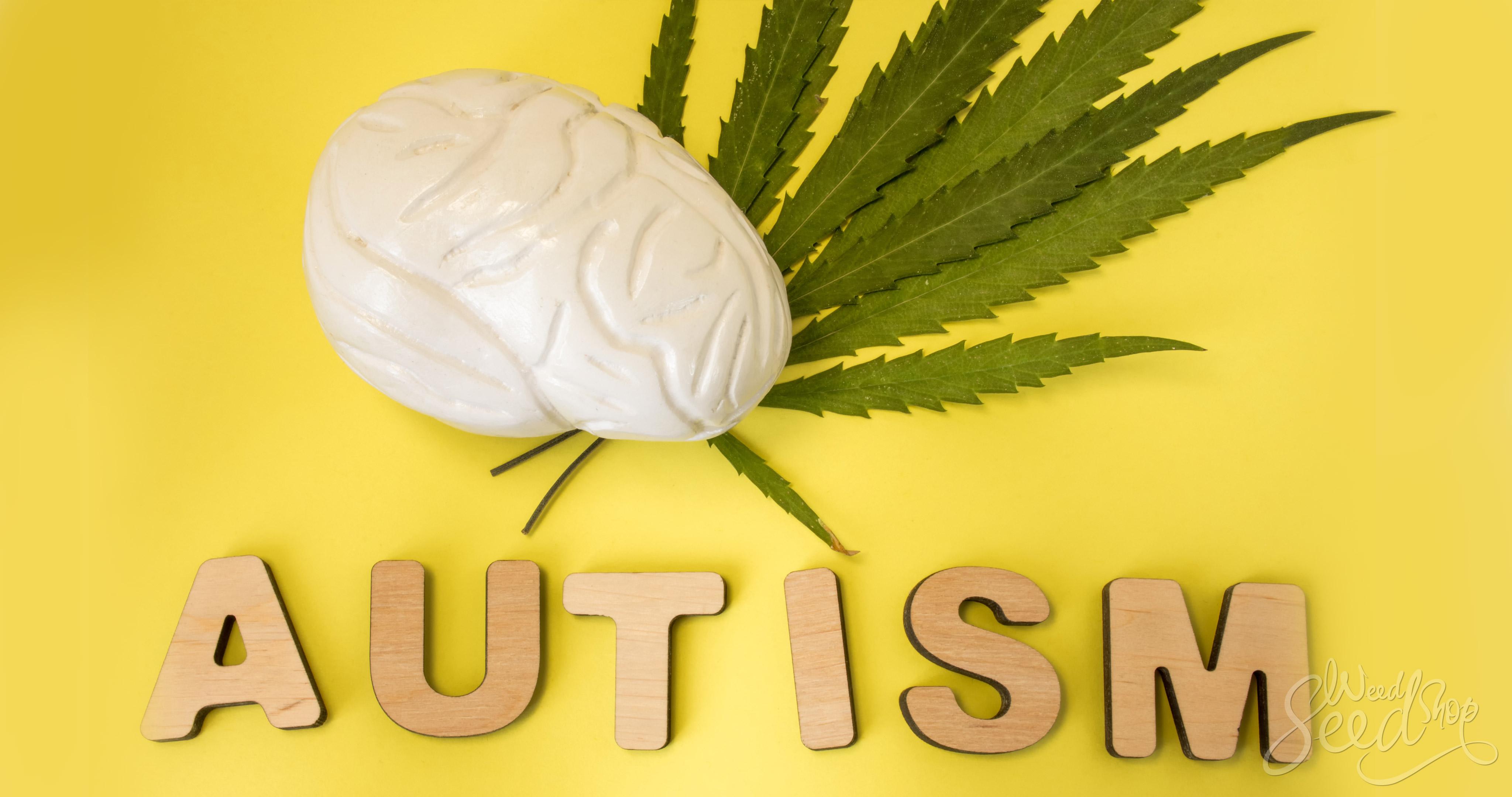 ¿La marihuana medicinal trata el autismo? - WeedSeedShop