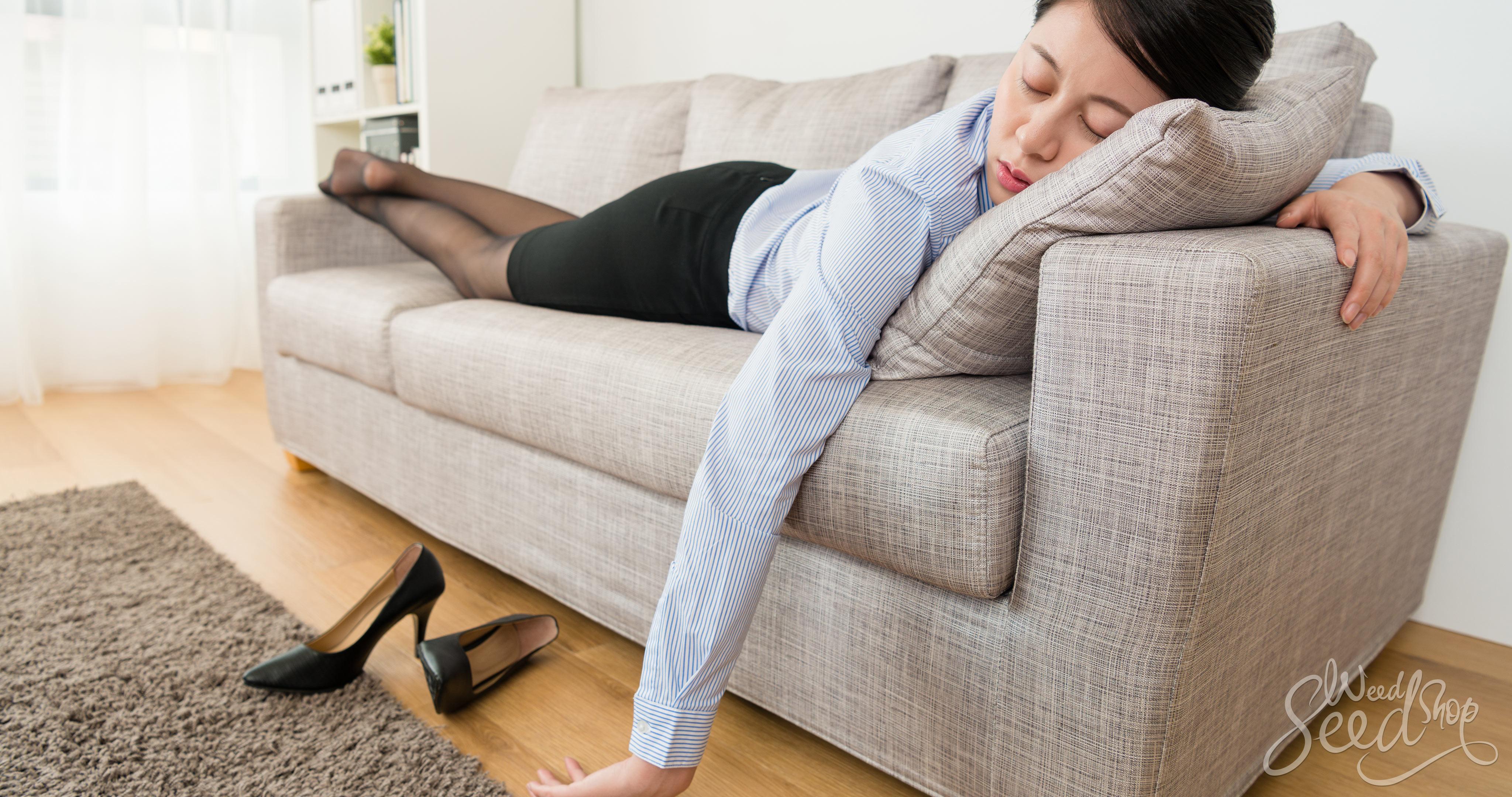 Wat is een wietkater en wat zijn de symptomen?