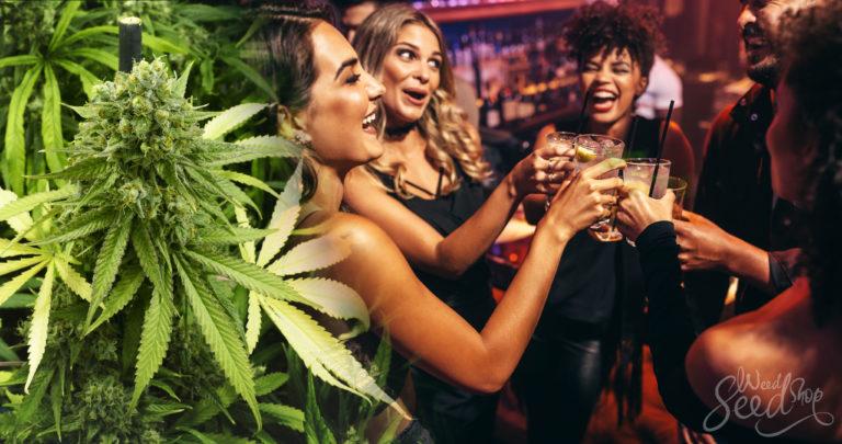 L'alcool infusé au cannabis : C'est quoi, et comment en faire ?