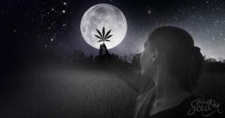 Menstrual Marijuana: Visiting a weed witch